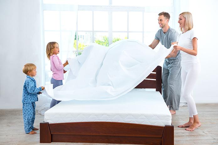 Bed Bug Battle