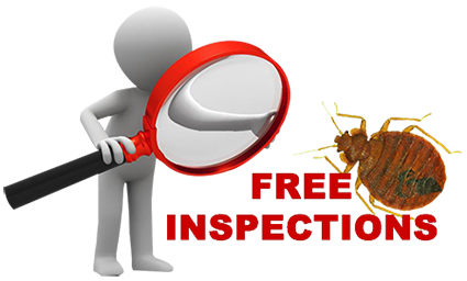 Free-Residential-and-Commercial-Bed Bug inspections